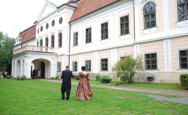 Dvorac Janković